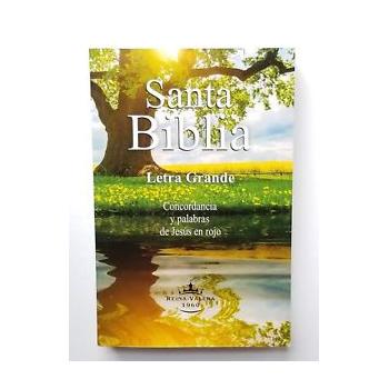Biblia Letra Grande Mediana Rustica RVR060LG Colores