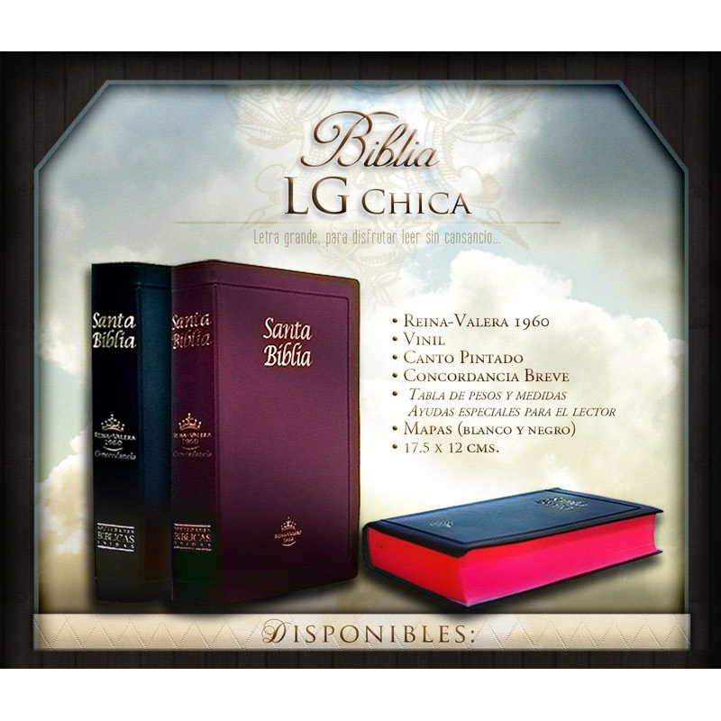 Biblia RVR1960 Chica Letra Grande Vinil Concordancia