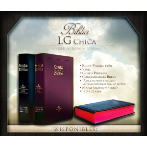 Biblia Chica Letra Grande Vinil Concordancia