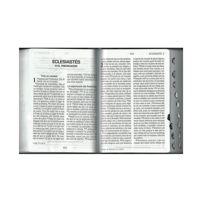 Biblia Mediana Letra Grande Tapa Dura Indice Cafe