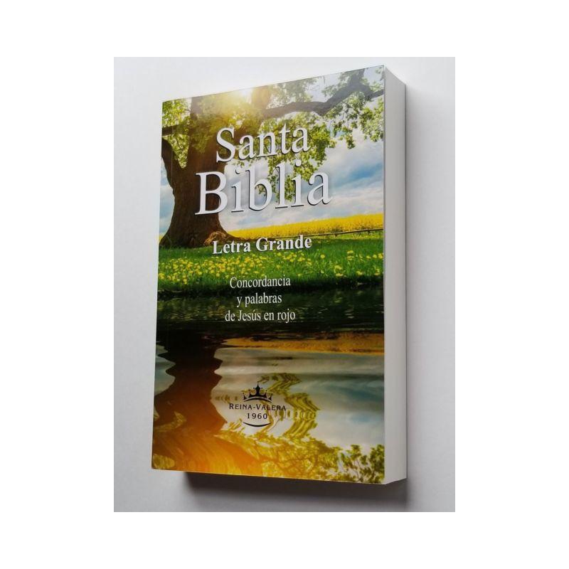 Biblia Letra Grande Mediana Rustica PJR RVR060LG Colores