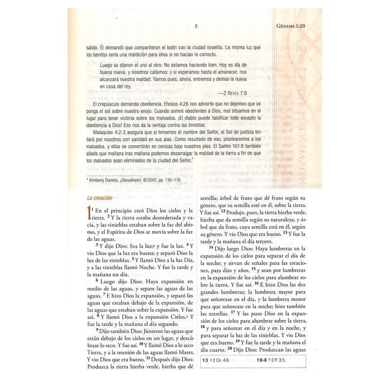 Biblia Económica Letra Grande RVR 1960