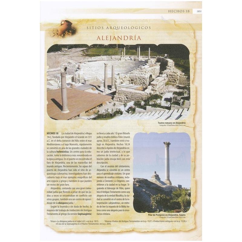La Biblia NVI Arqueológica, Piel Especial Vino